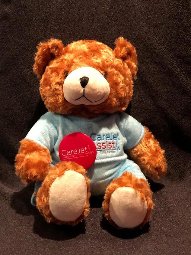 Mini CJ the Bear